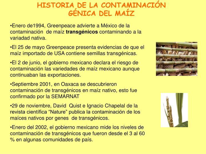 HISTORIA DE LA CONTAMINACIÓN GÉNICA DEL MAÍZ