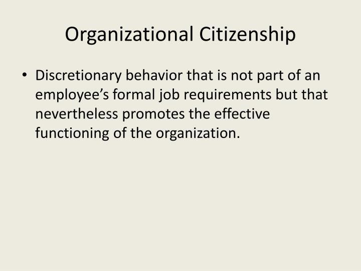Organizational Citizenship