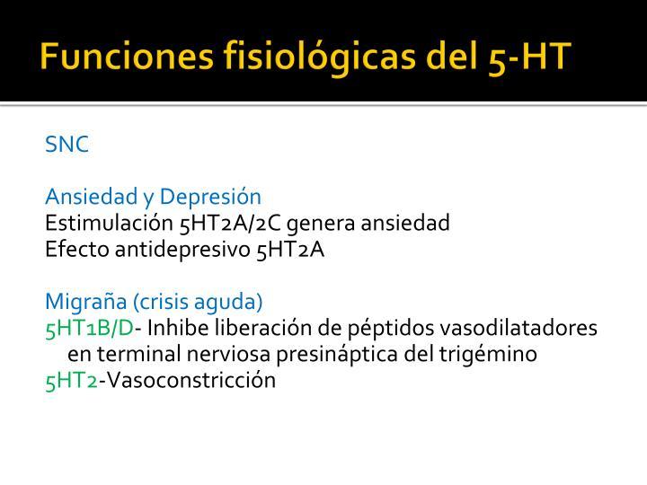 Funciones fisiológicas del 5-HT