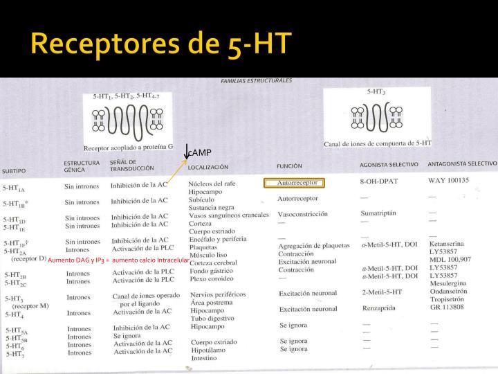 Receptores de 5-HT