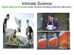 intimate science pigeon blog b da costa inside outside handbag katherine moriwaki