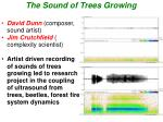 the sound of trees growing
