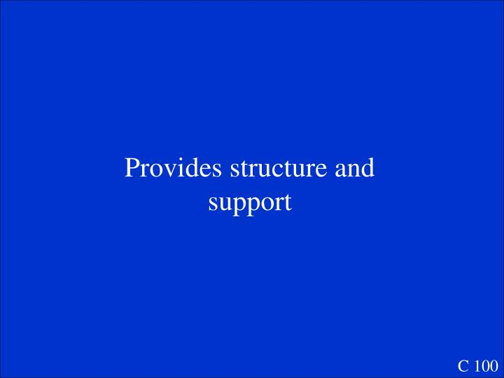 Provides structure and support