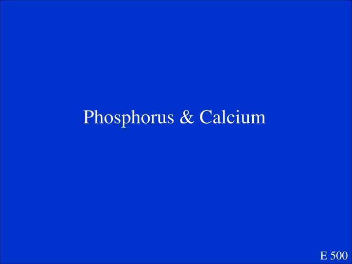 Phosphorus & Calcium