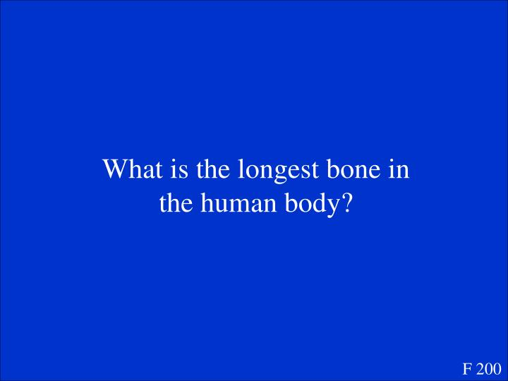 What is the longest bone in the human body?