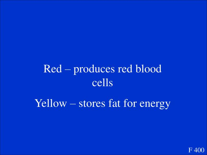 Red – produces red blood cells