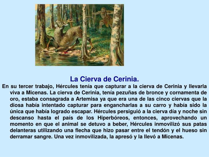 La Cierva de Cerinia.