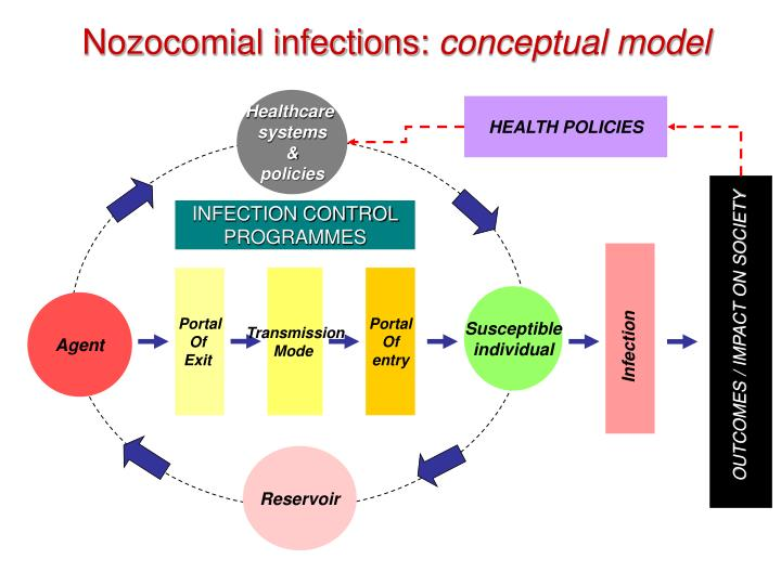 Nozocomial infections conceptual model