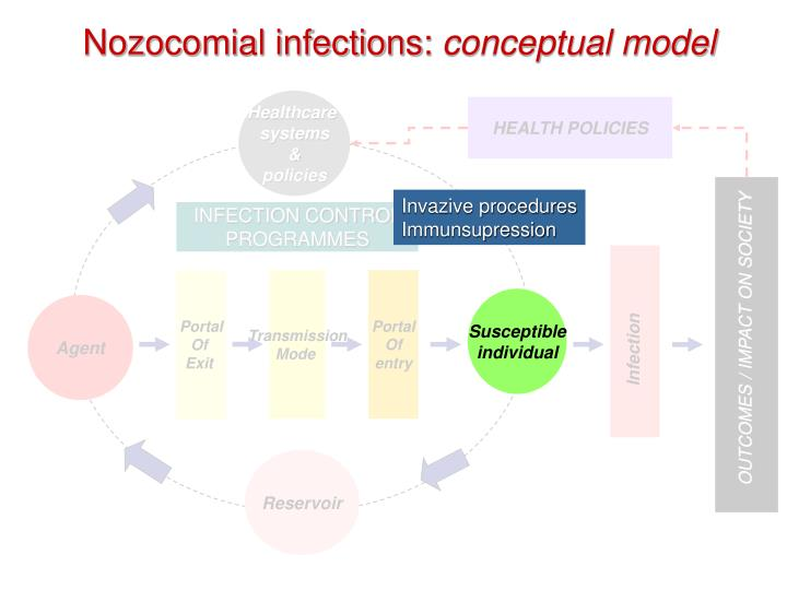 Nozocomial infections conceptual model1