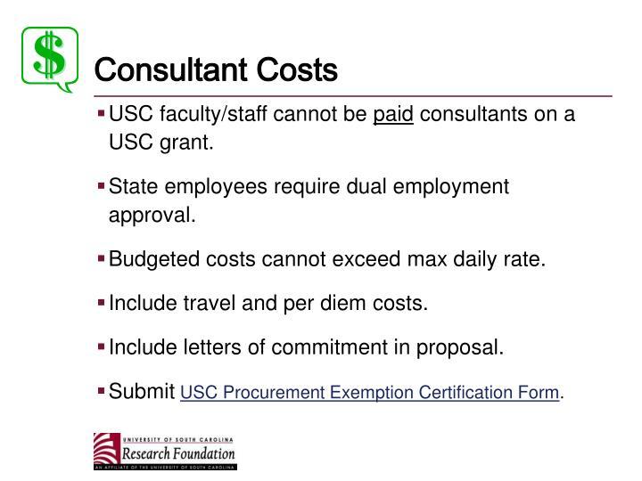 Consultant Costs