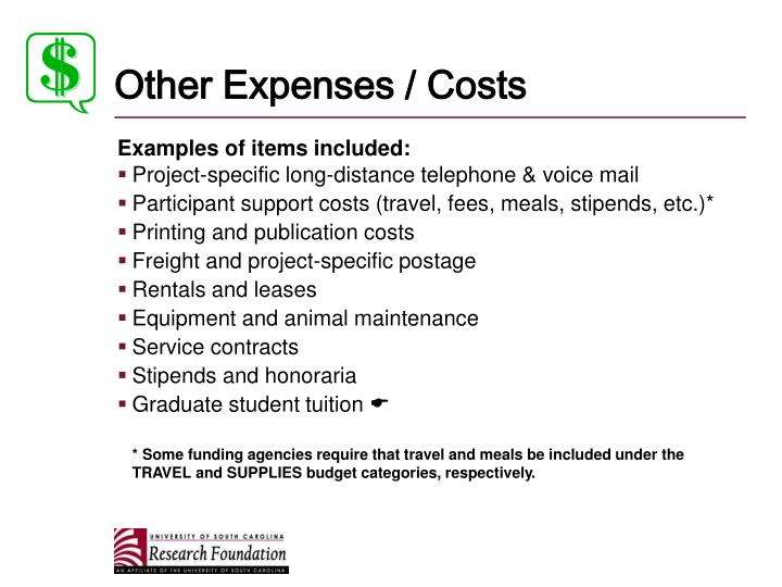 Other Expenses / Costs