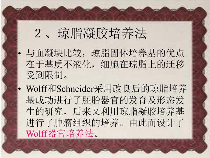 2、琼脂凝胶培养法