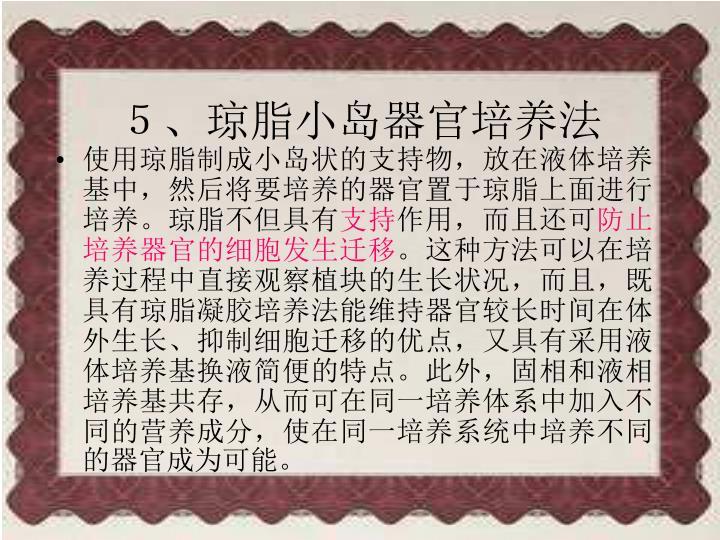5、琼脂小岛器官培养法