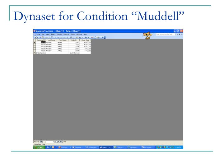 "Dynaset for Condition ""Muddell"""