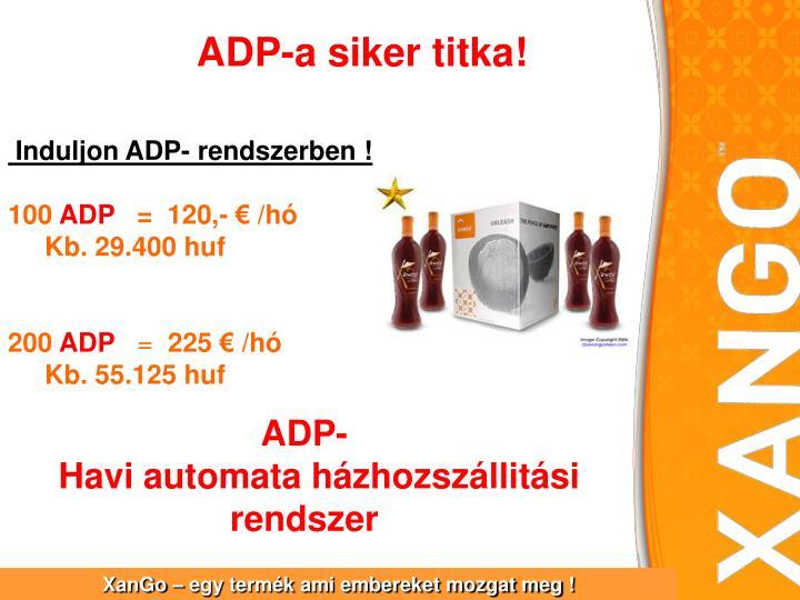 ADP-a siker titka!