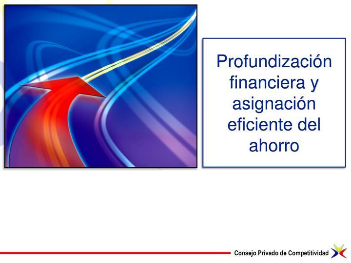 Profundización financiera y asignación eficiente del ahorro