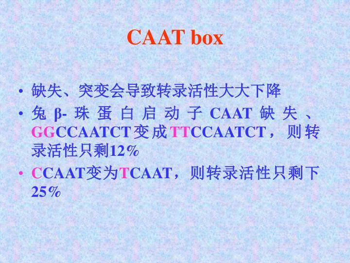 CAAT box