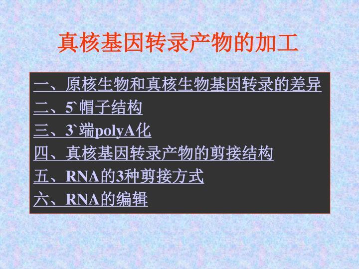 真核基因转录产物的加工