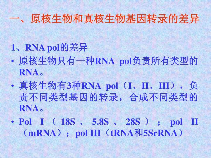 一、原核生物和真核生物基因转录的差异