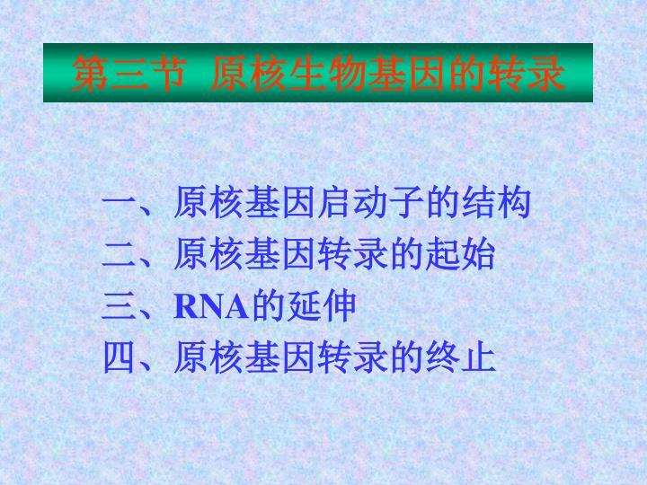 第三节  原核生物基因的转录