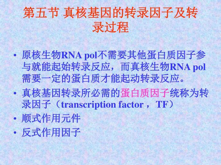 第五节 真核基因的转录因子及转录过程