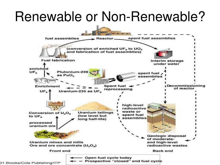 Renewable or Non-Renewable?