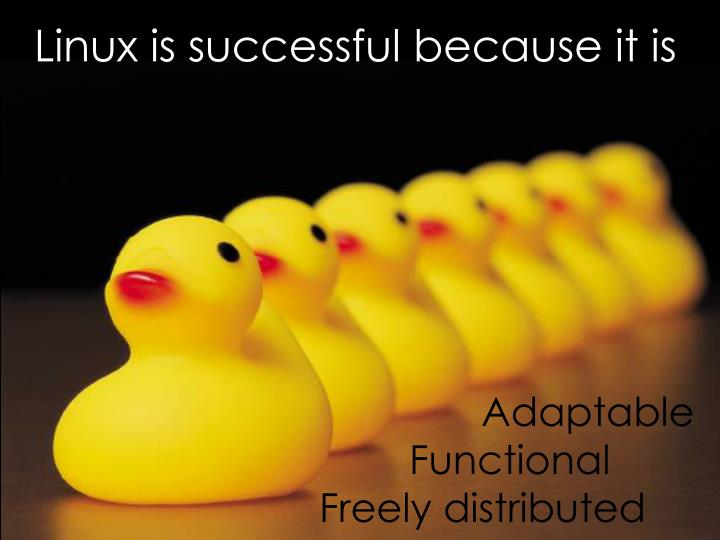 Linux is successful because it is