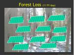 forest loss 11 ff day