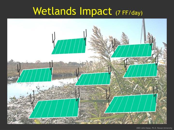 Wetlands Impact