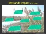 wetlands impact 7 ff day