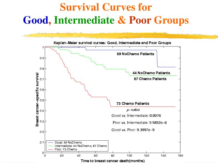 Survival Curves for