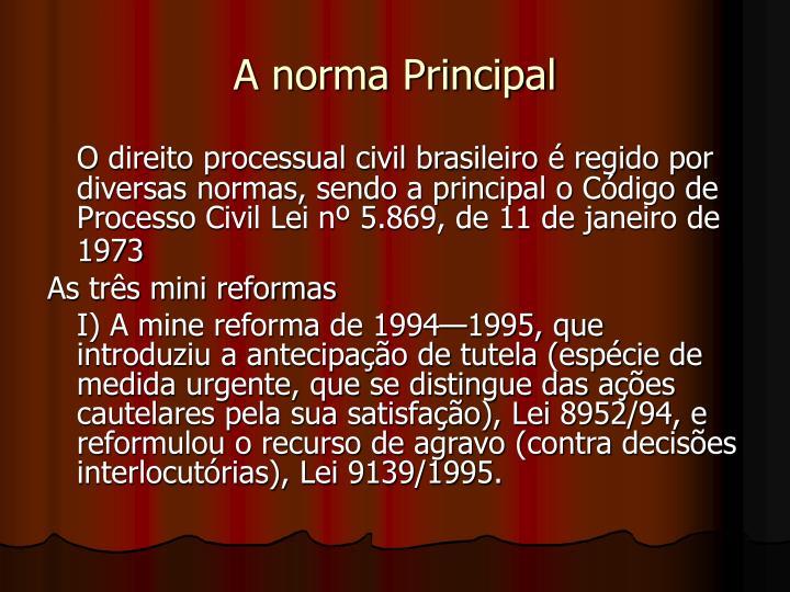A norma Principal