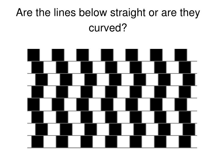 Are the lines below straight or are they curved?