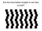 are the lines below straight or are they curved