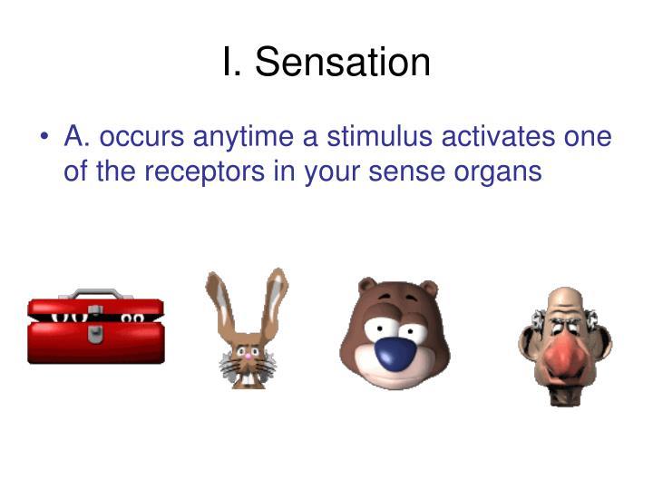I. Sensation