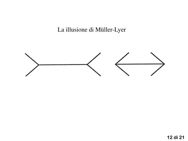 La illusione di Müller-Lyer