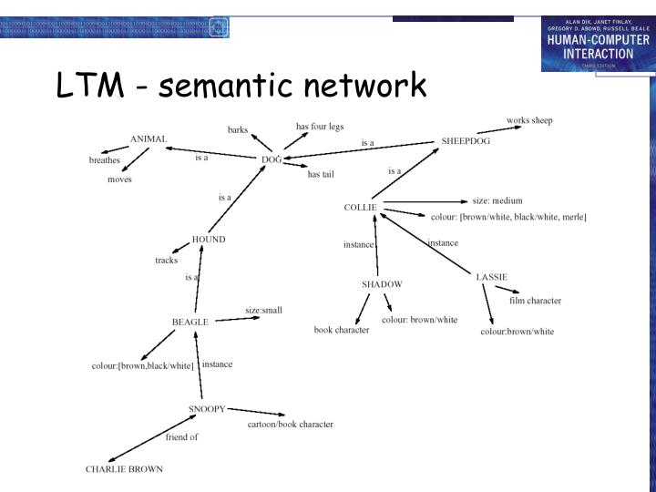 LTM - semantic network