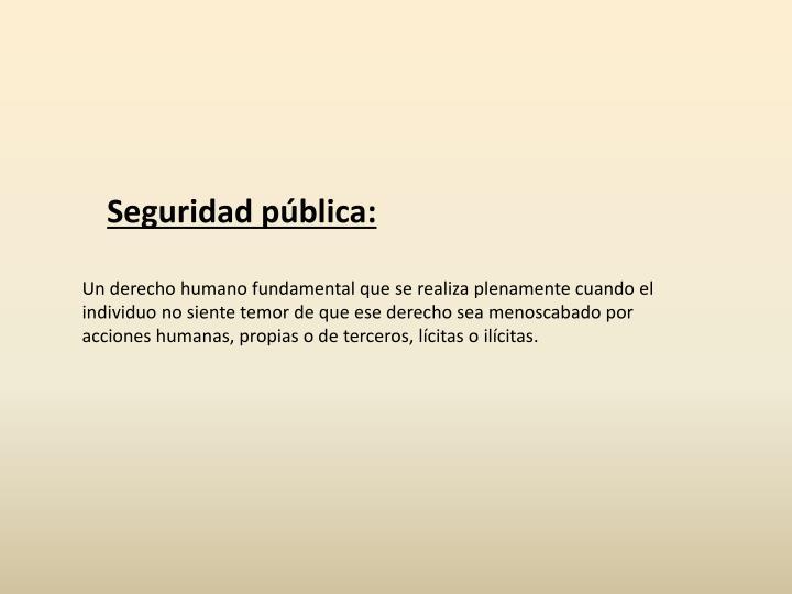 Seguridad pública: