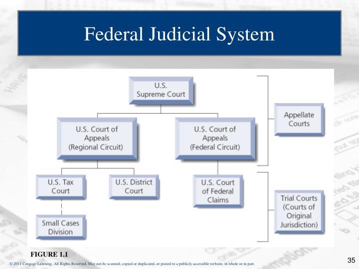 Federal Judicial System