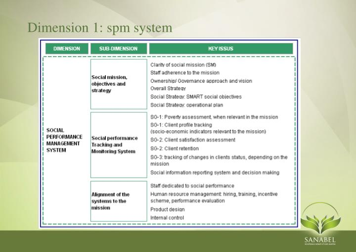 Dimension 1: spm system