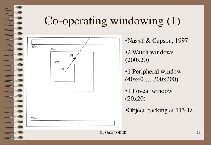 Co-operating windowing (1)