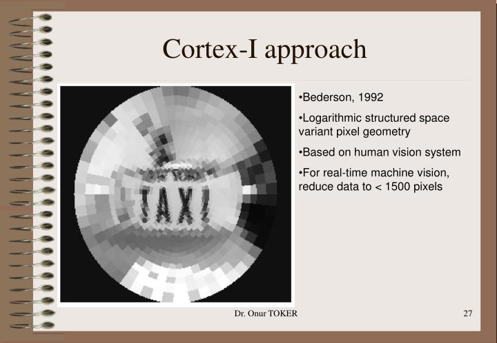 Cortex-I approach