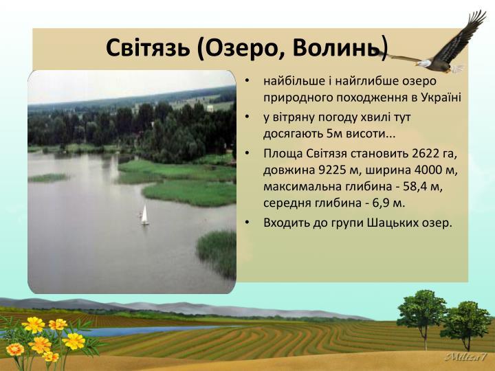 Світязь (Озеро, Волинь