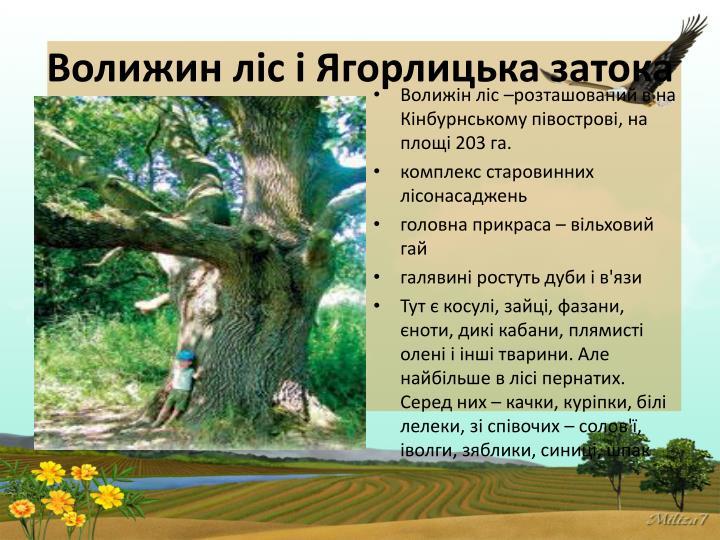 Волижин ліс і Ягорлицька затока