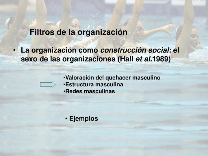 Filtros de la organización