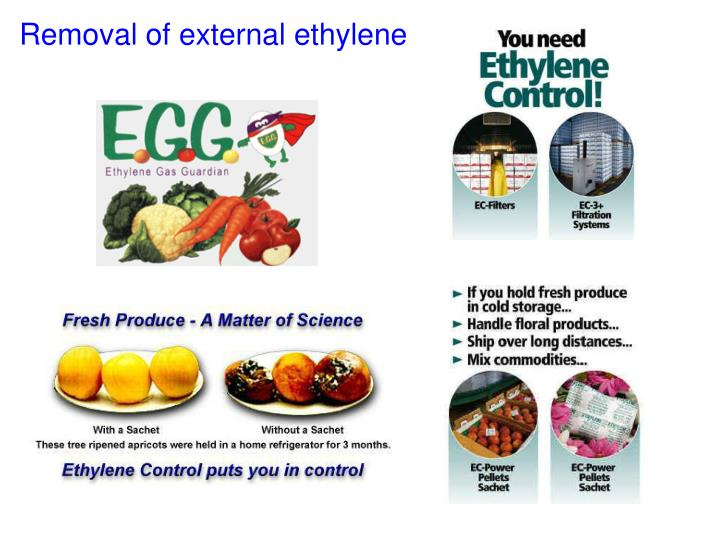 Removal of external ethylene