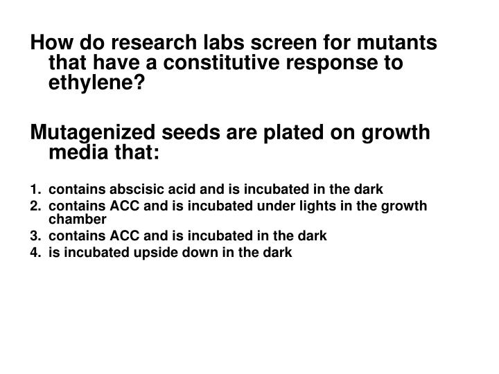 How do research labs screen for mutants that have a constitutive response to ethylene?