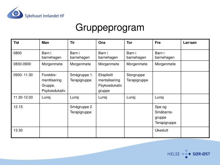 Gruppeprogram