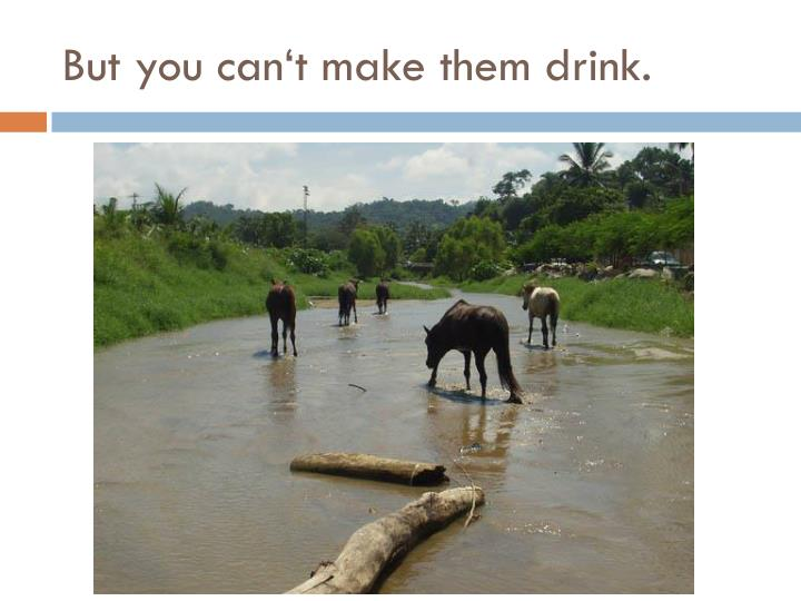 But you can t make them drink