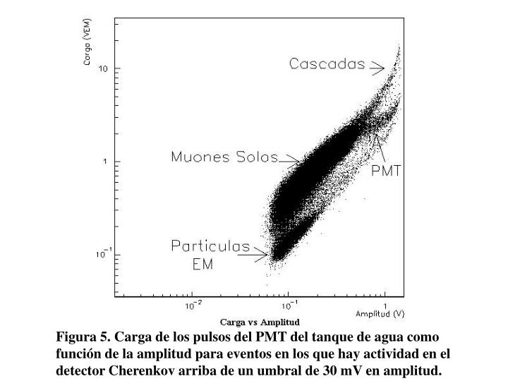 Figura 5. Carga de los pulsos del PMT del tanque de agua como función de la amplitud para eventos en los que hay actividad en el detector Cherenkov arriba de un umbral de 30 mV en amplitud.